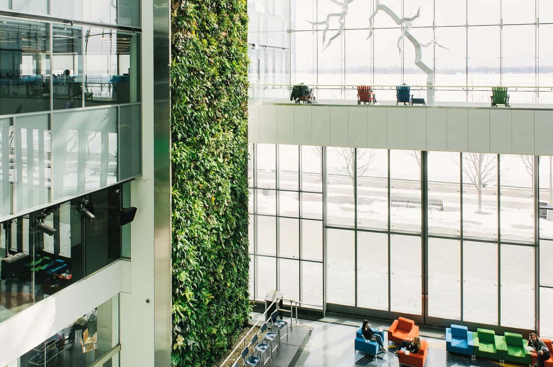 Nedlaw living wall biofilter office design