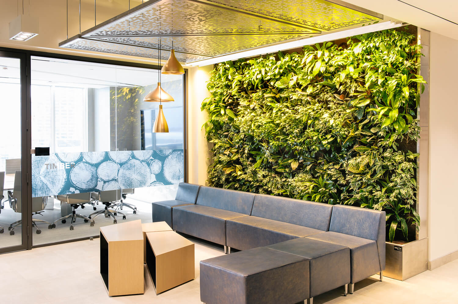Nedlaw living wall specs and office design